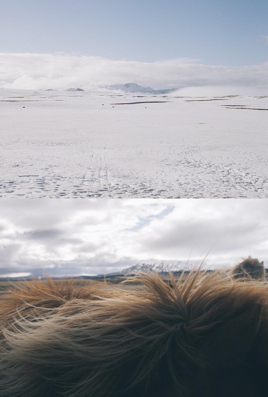Como indica el nombre de esta exposición, Islandia, además de ser un país localizado en el extremo noroeste de Europa es también el nombre de esta serie de fotos, que logra alejarse radicalmente de la fotografía más formal -y turística-, del país para bucear en una historia sobre amor y geografía romántica.