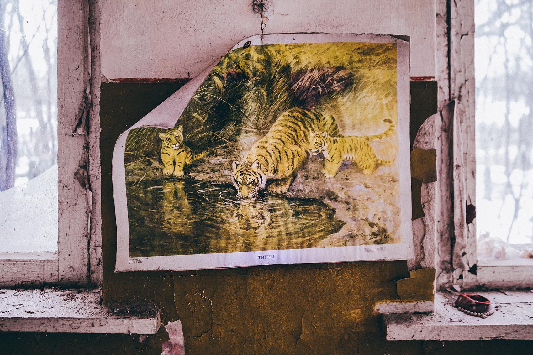 Artboard 60.jpg