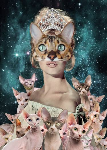 Crazy cat lady.jpg