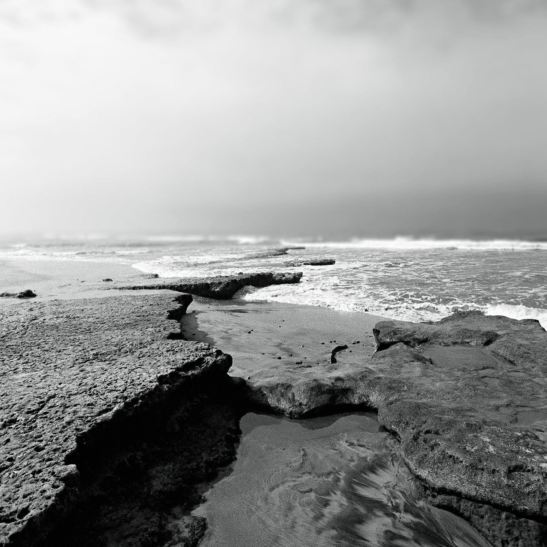 Seaside Reef copy.jpg
