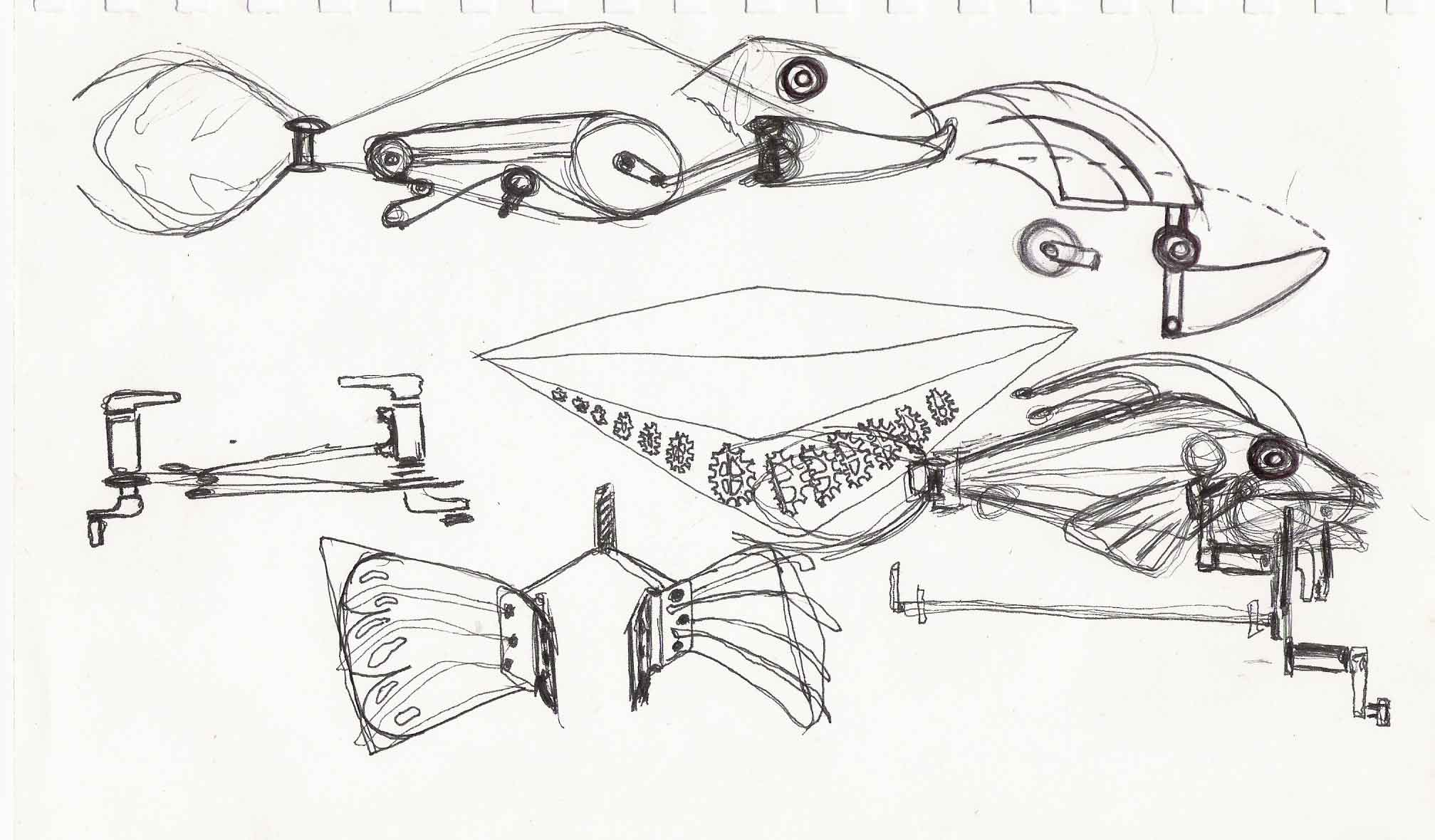 2 nd Fish Sketch