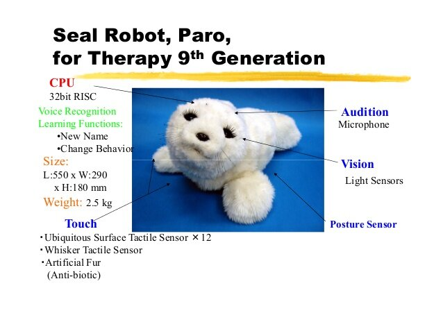 Paro the therapy seal