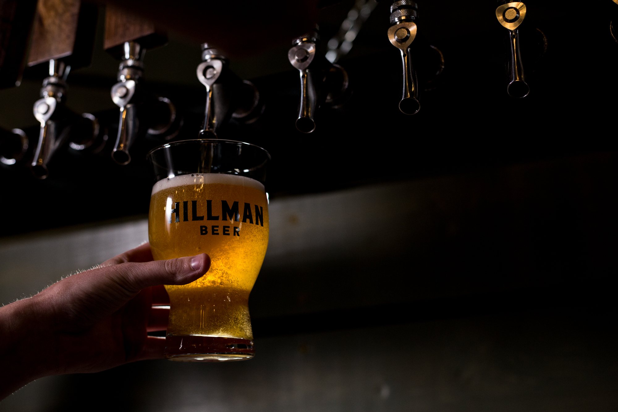 Hillman Beer - West Ashe - Asheville, NC