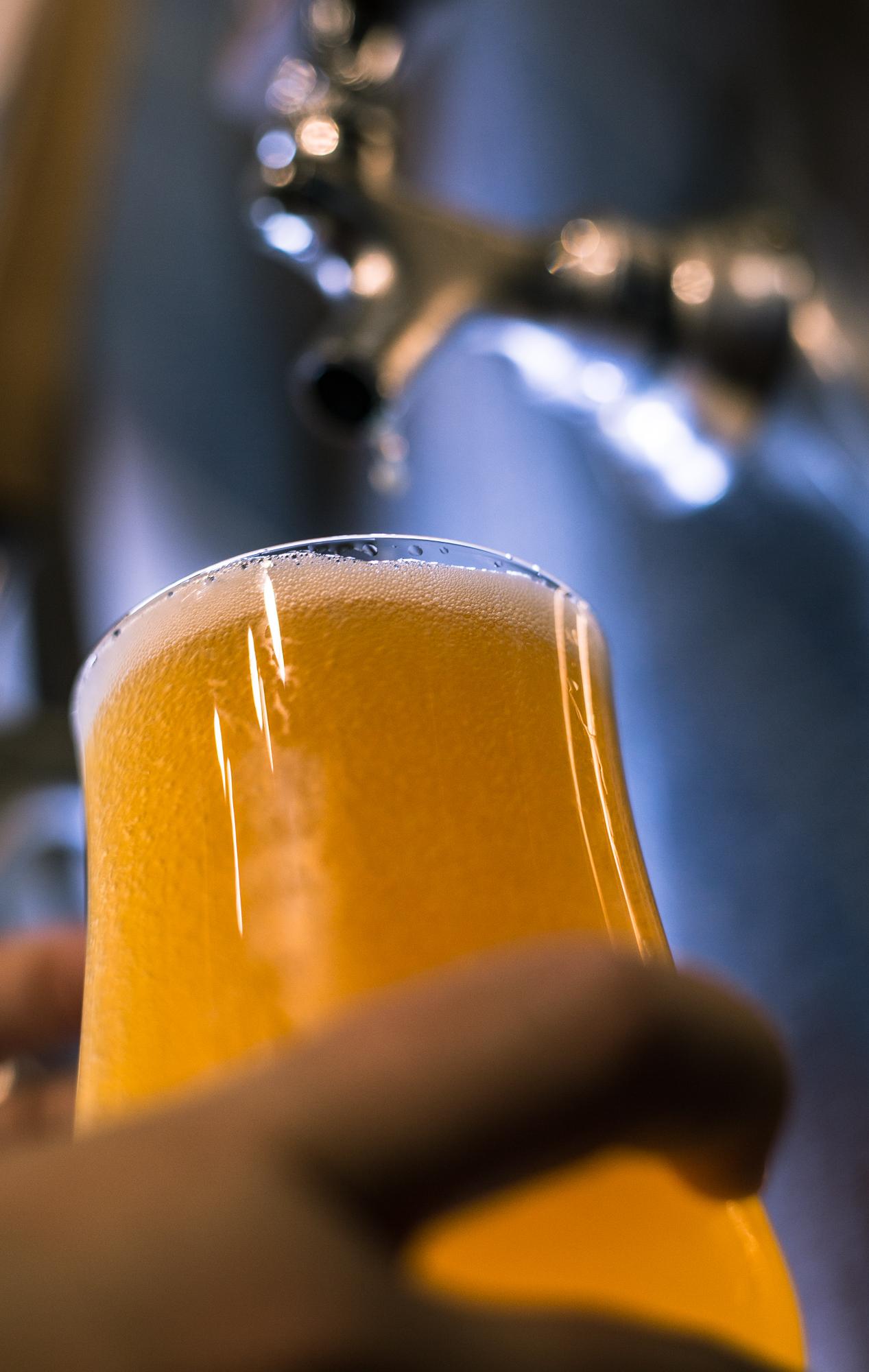 Archetype Asheville - West Ashe - beer