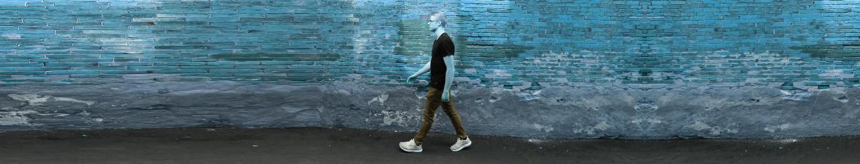 brick_walking_banner.jpg