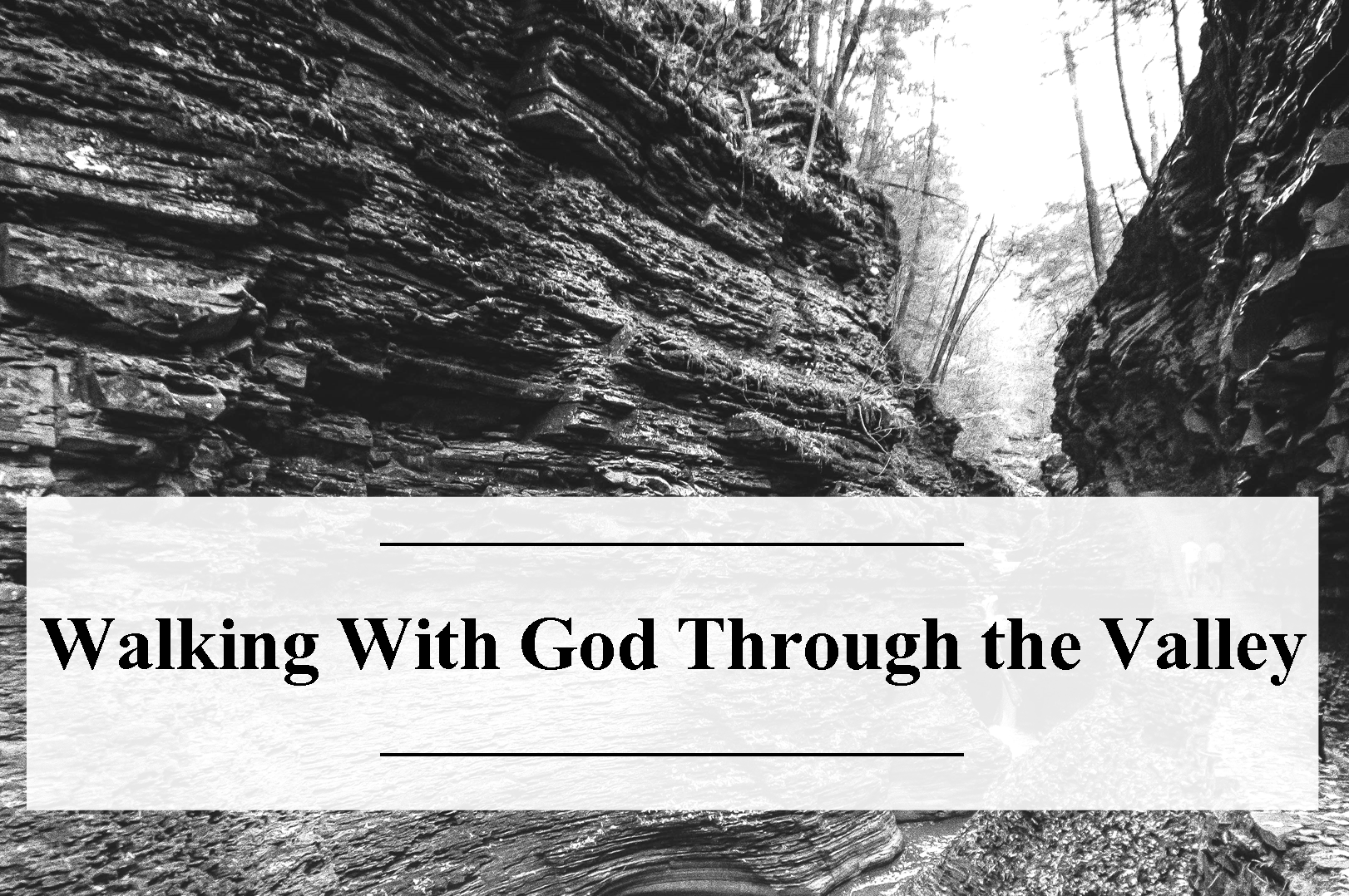 psalm 23 — Sermons — Christiansburg Mennonite Fellowship