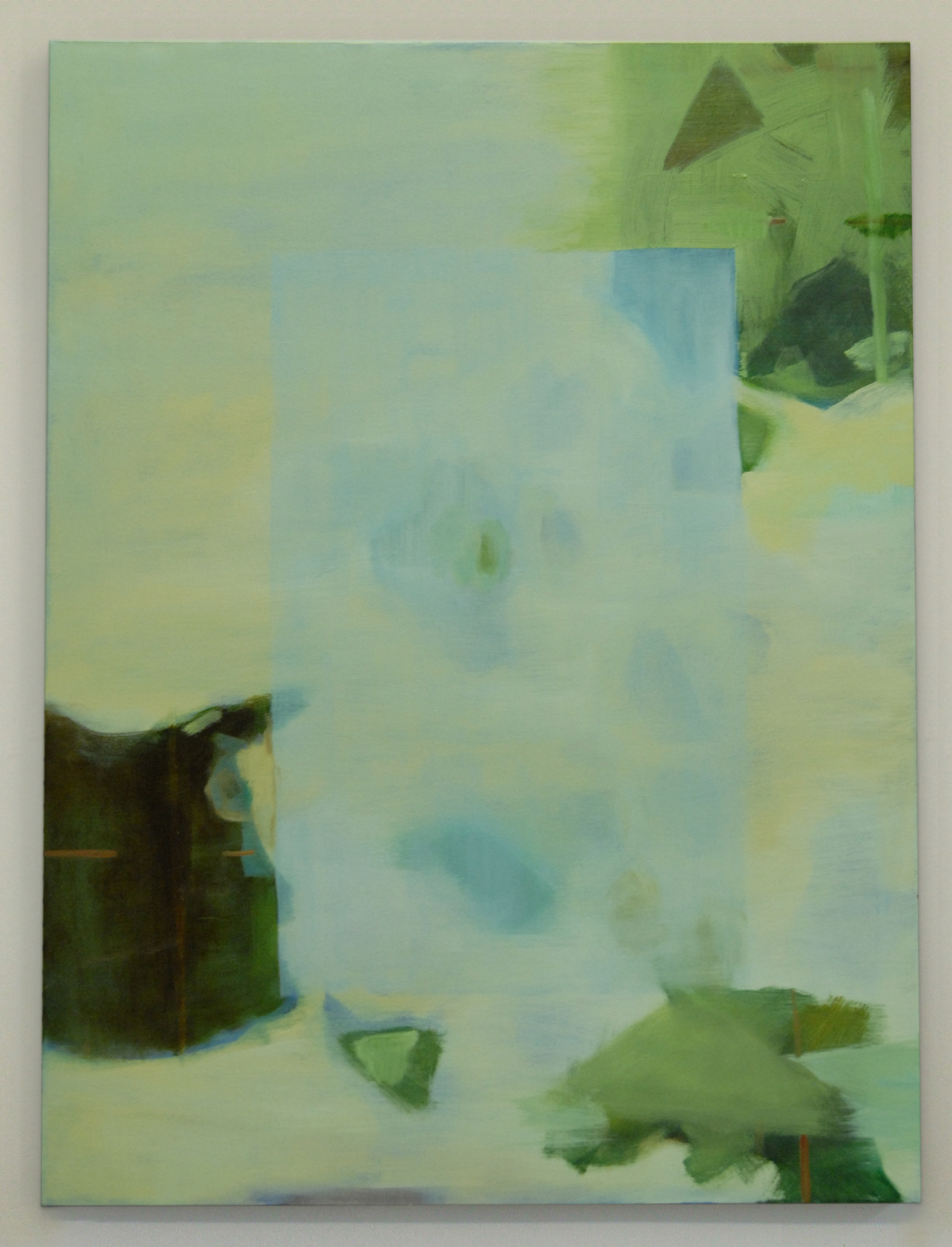 Archipelago, 2012, oil on canvas, 48 x 36 inches