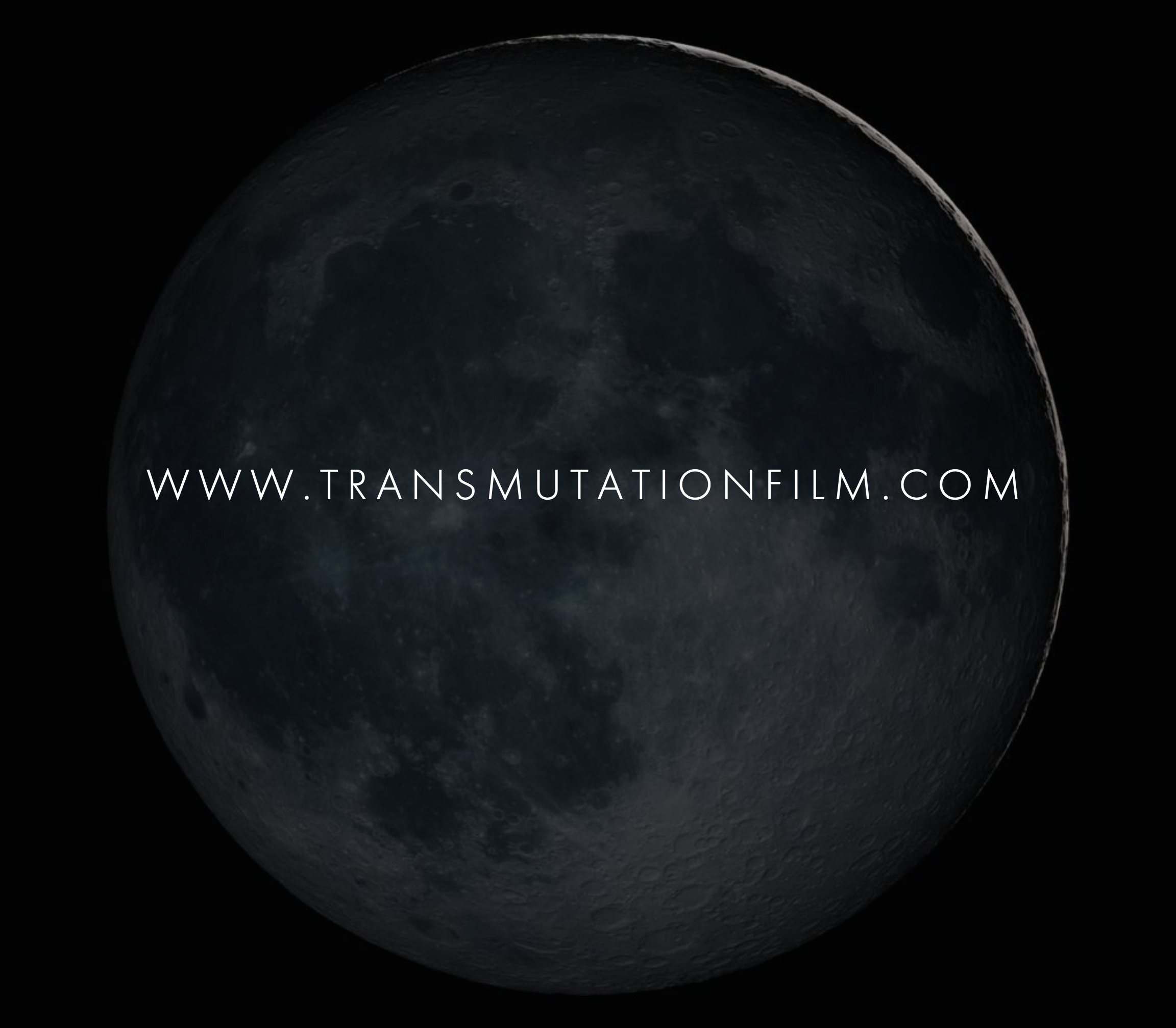 wwwtransmutationfilmcom.jpg