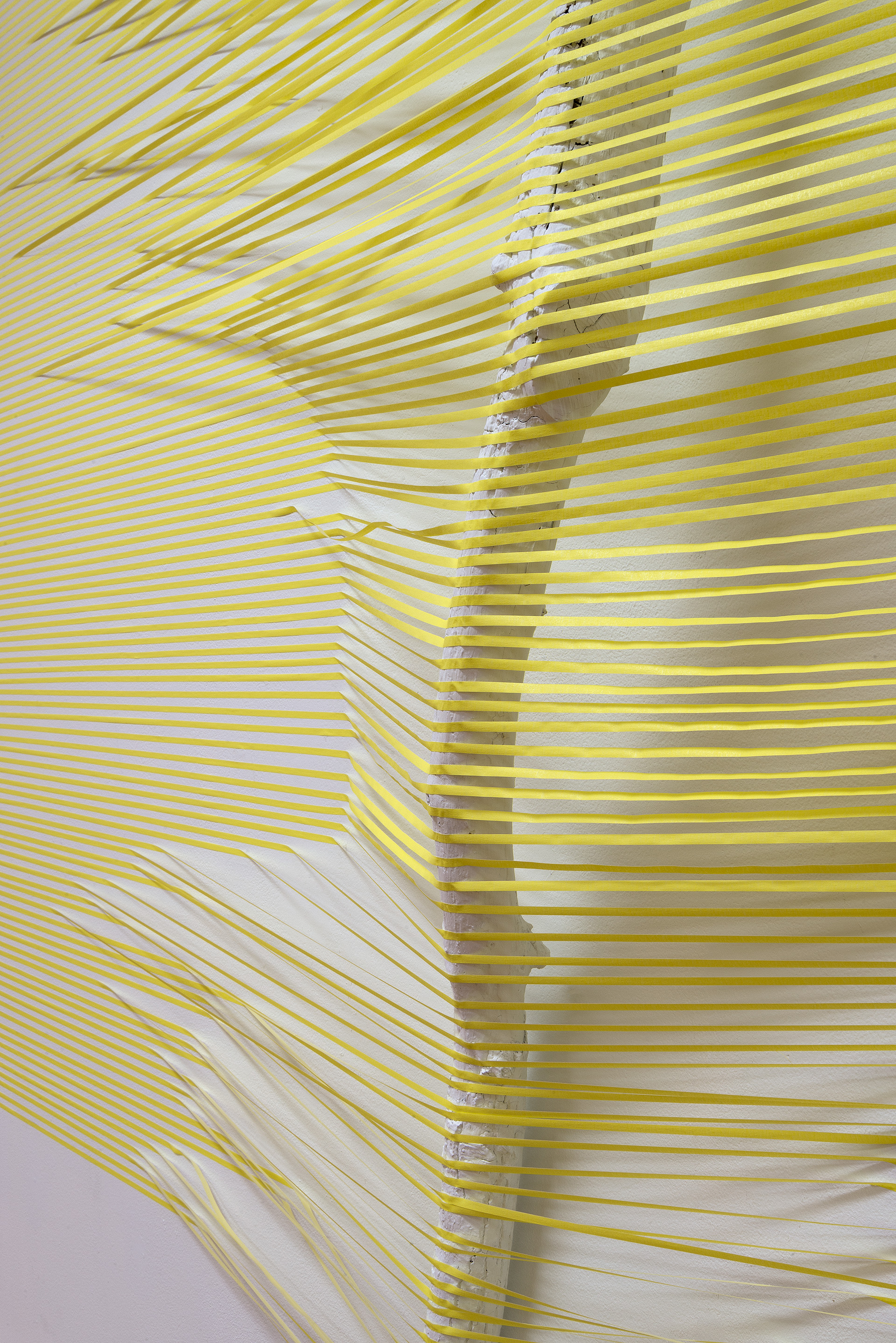 """Yellow and Blue Stick (40.0797 ° N,  88.2043 ° W)   2016  masking tape, paint and found sticks  96""""  x  168""""  x  10"""""""