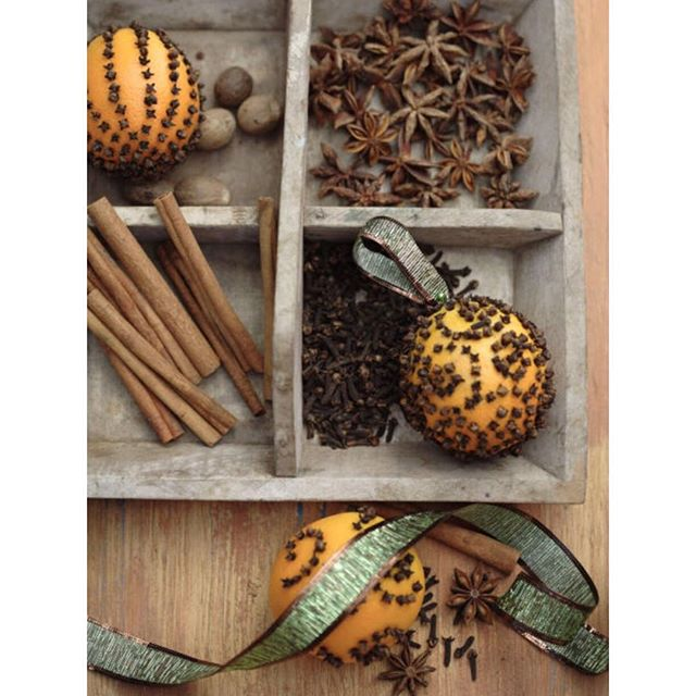Earthy and spicy 🍊 #creative #holiday #decor #ideas #Christmas #chrismasornaments #happyholidays #instaholiday #earthy #spicy #holidayseason