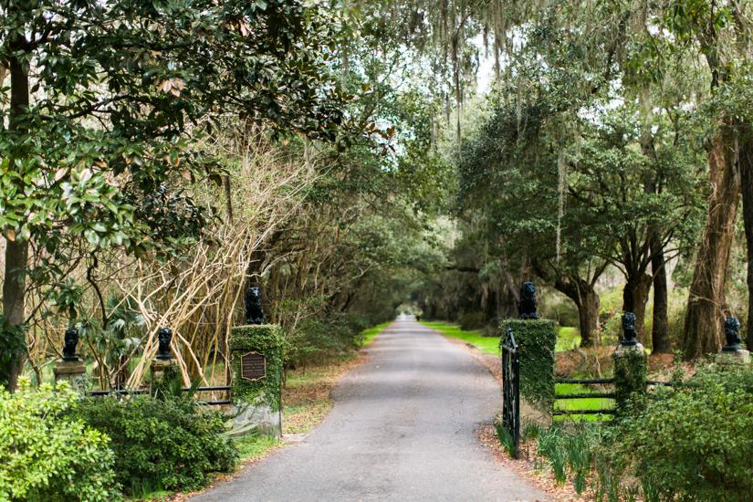 Charleston-2-3.jpg