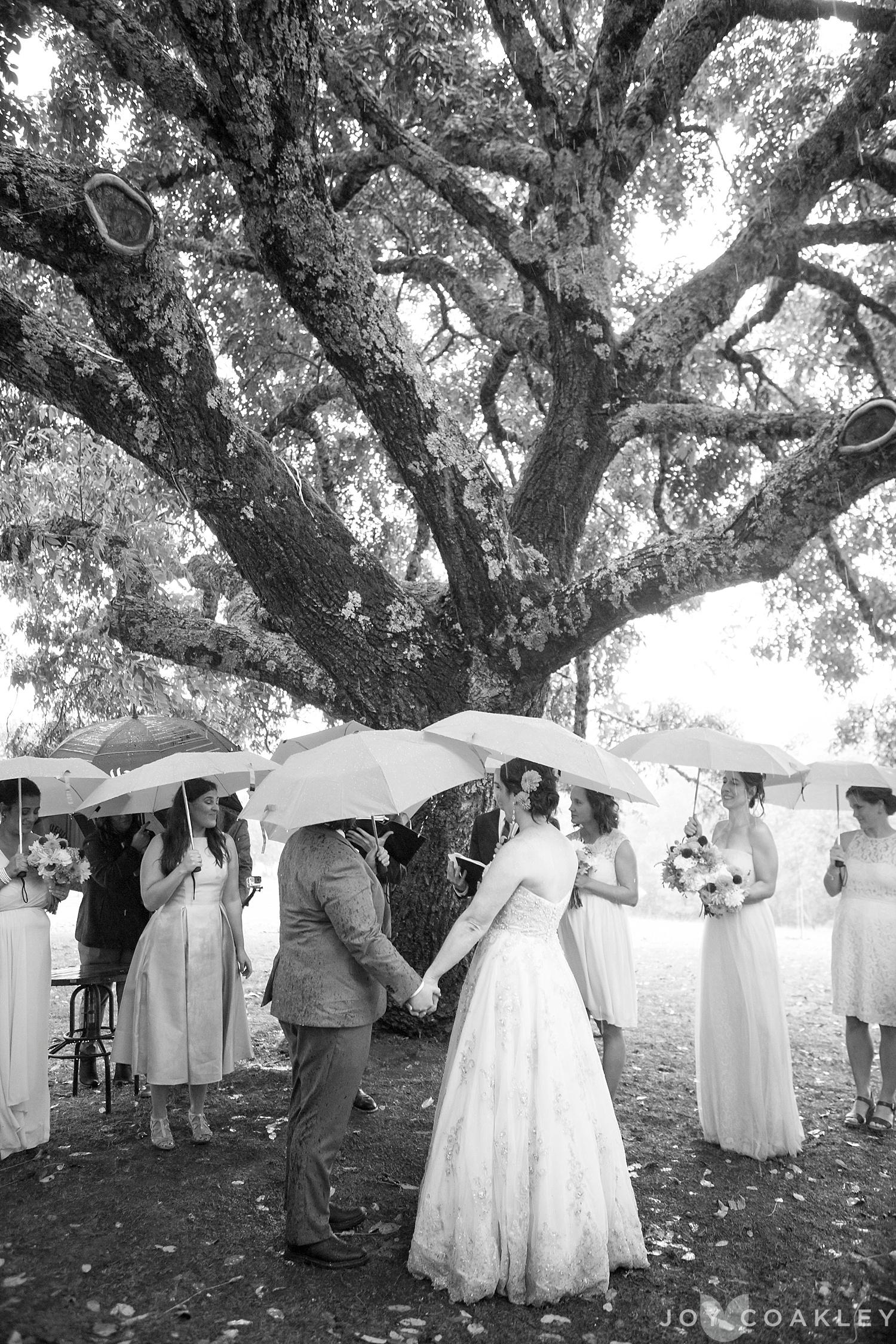Wedding-450_WEB.jpg