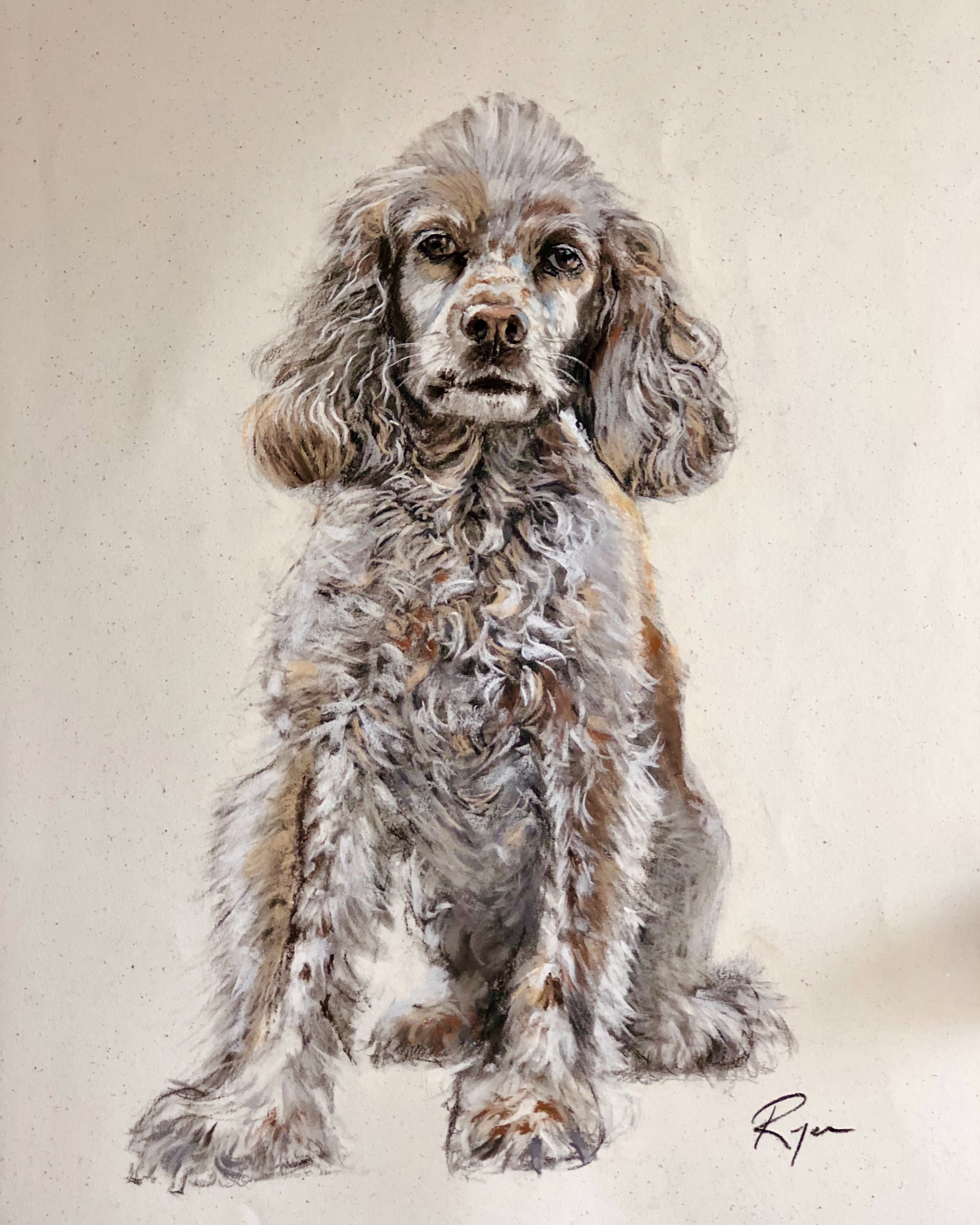 """Bella, 39"""" x 25"""", charcoal and dry pastels on paper"""