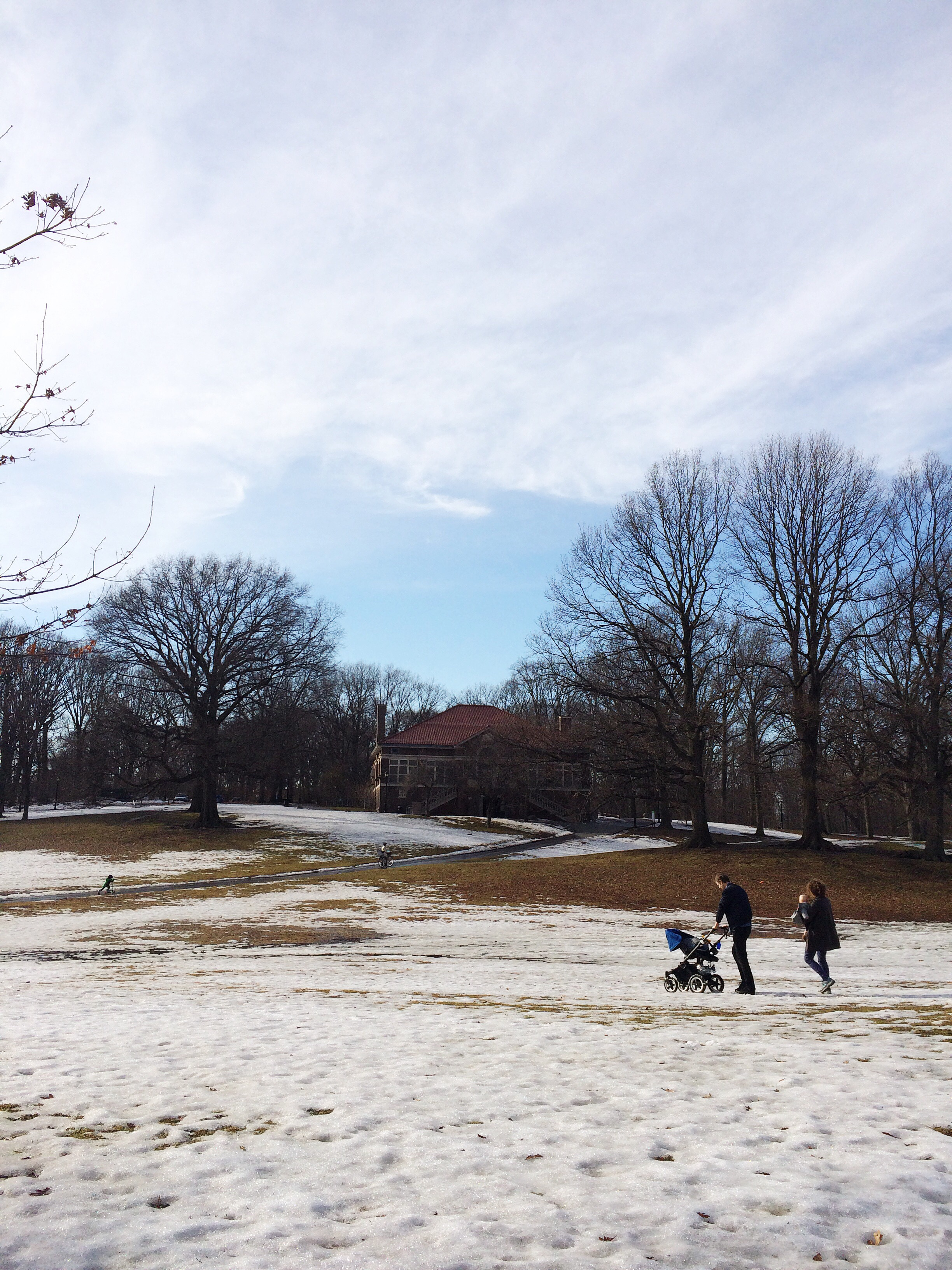 A scene from Prospect Park last week as the snow finally starts to thaw out from the grounds.