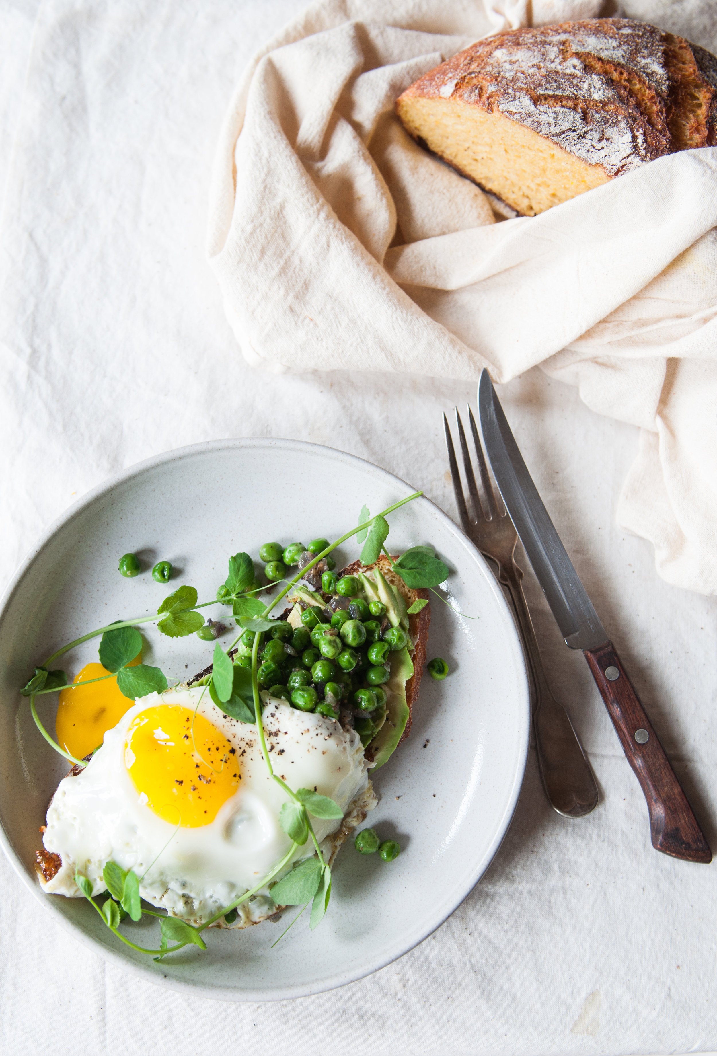 Slice of butternut squash country bread, buttered and topped with smashed avocado, sautéed peas, fried egg and pea shoots for garnish.