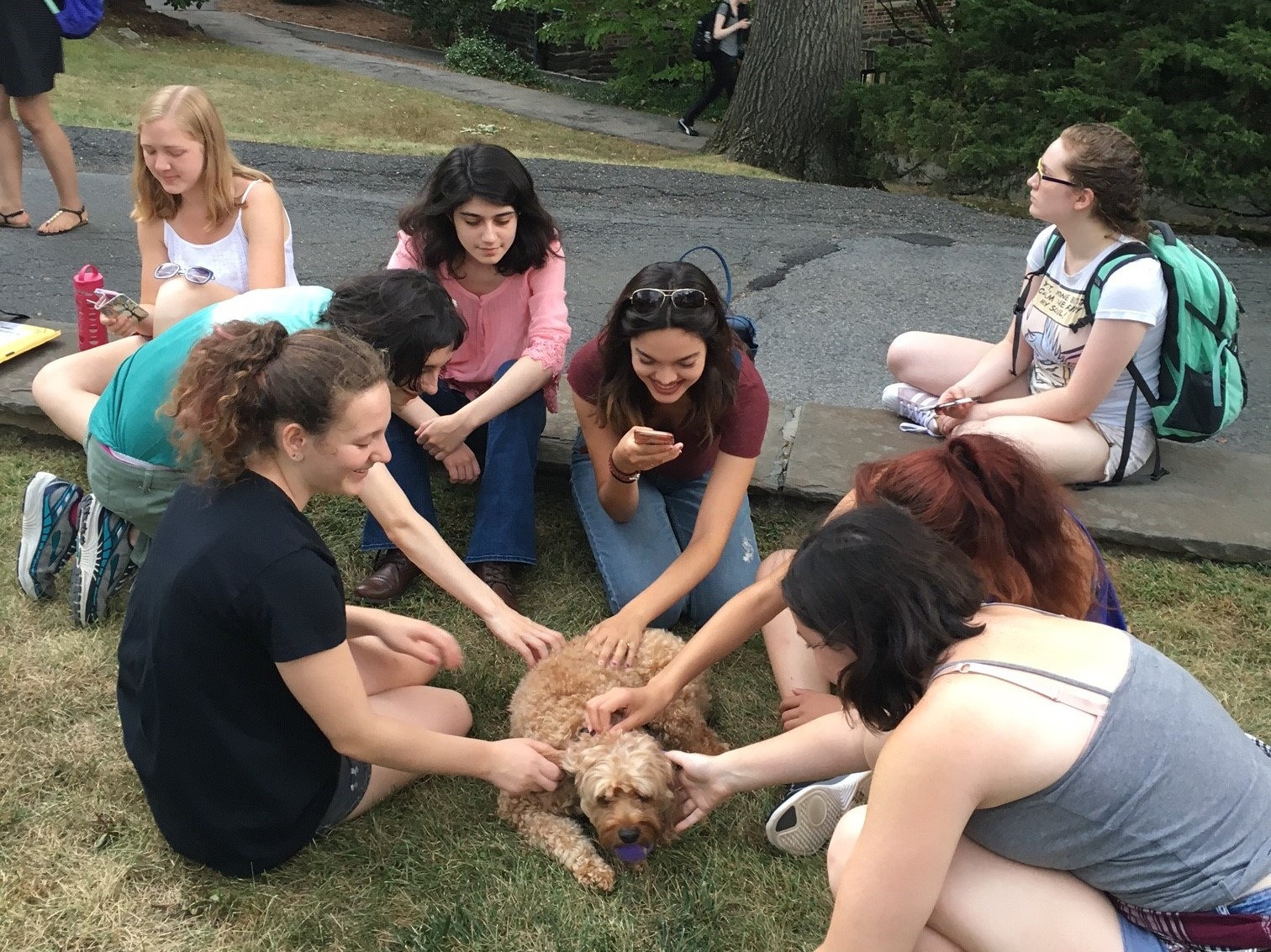 Students playing with one of the dogs on the North Lawn last September. Photo courtesy of Cynthia Schaffler.