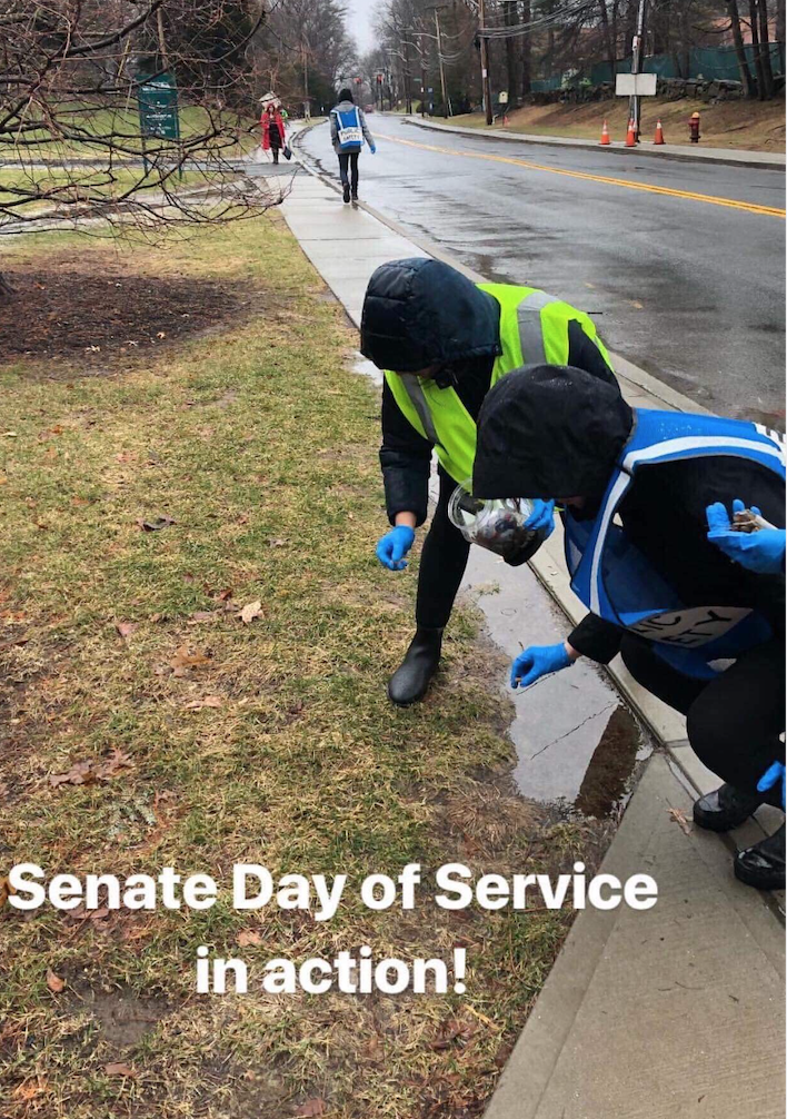 Photo from Senate Day of Service last year.