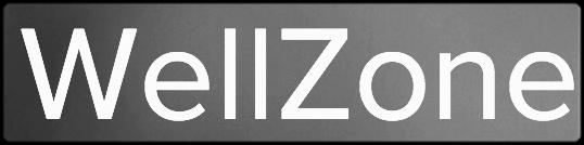 Wellzone Logo.png