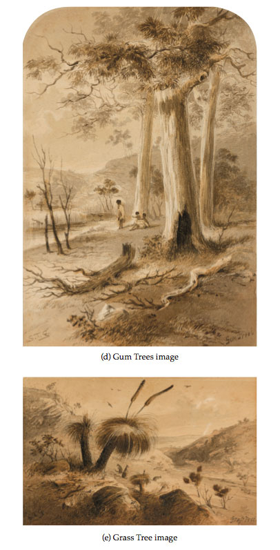Samuel Thomas Gill Gum Trees Grass Tree drawing