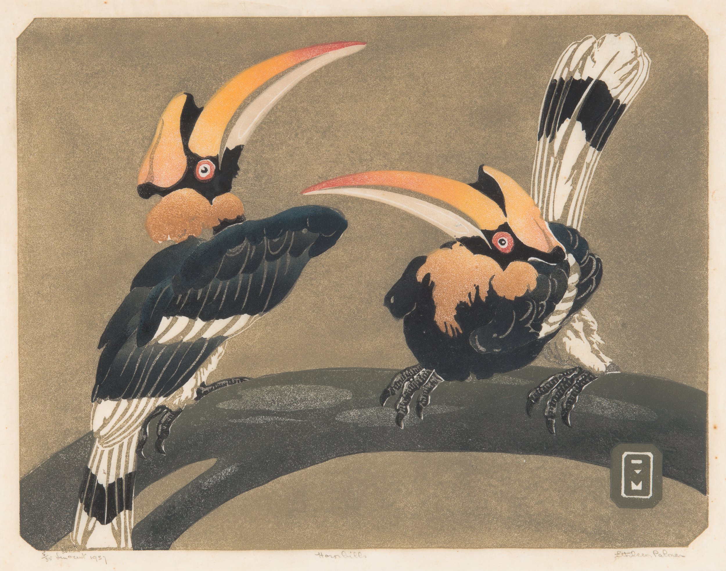 Ethleen Palmer - Hornbills 1937