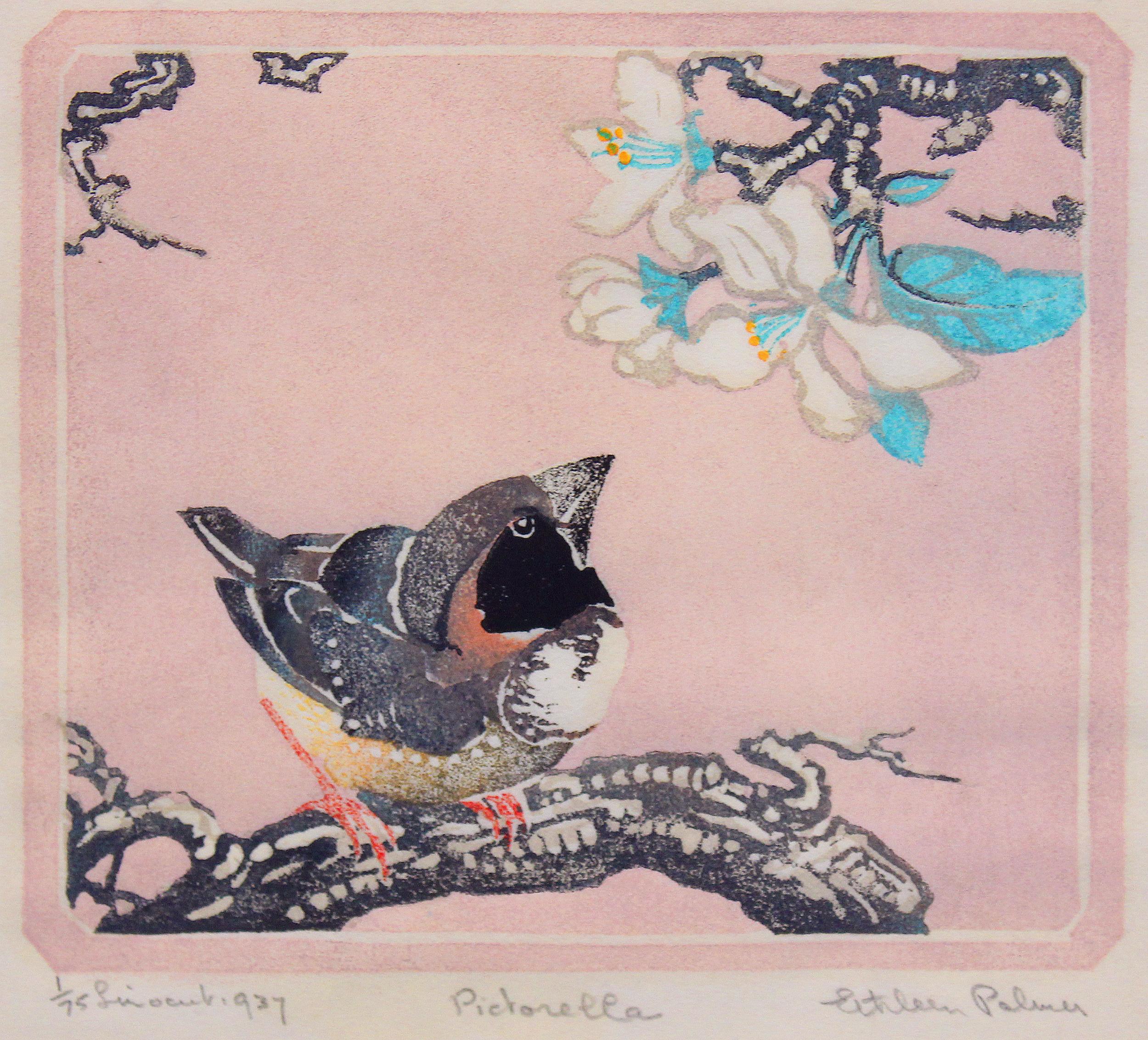 Ethleen Palmer - Pictorella 1937