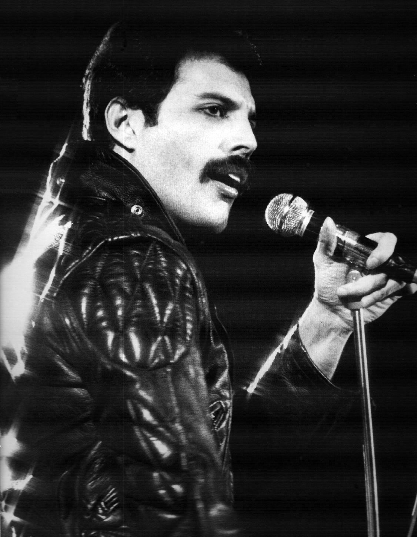 Freddie Mercury. Freddie Mercury  with zombies  (contains profanity)
