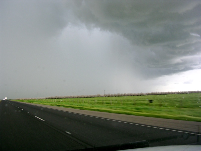 Purifying rain.