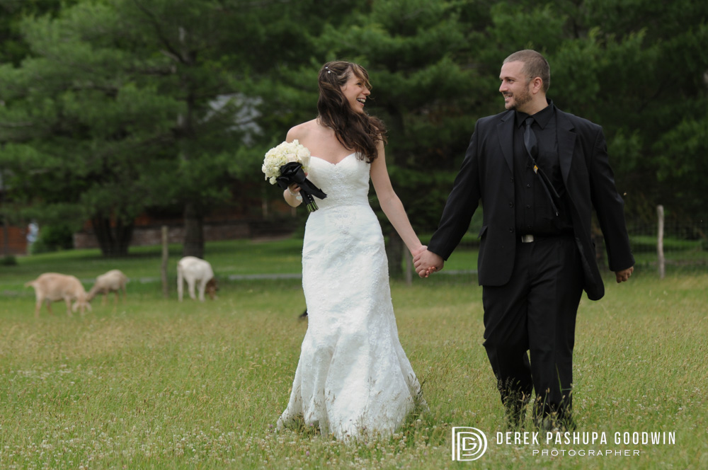 bride and groom walking together in sheep meadow