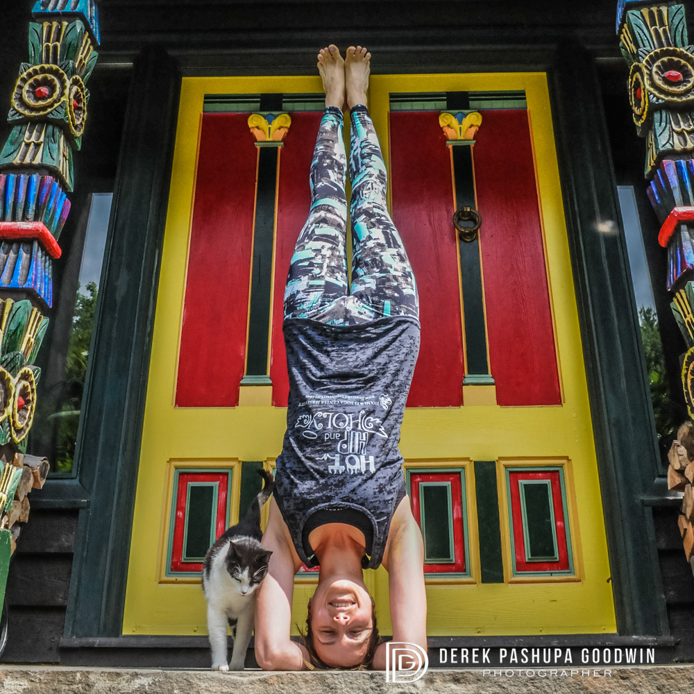 If the traditional cat pose is too easy for you, try posing with a cat in headstand!