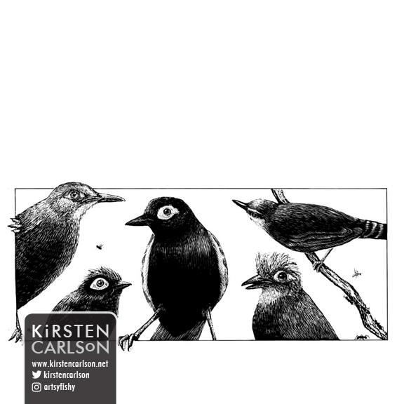 WEB sci antbirds.jpg