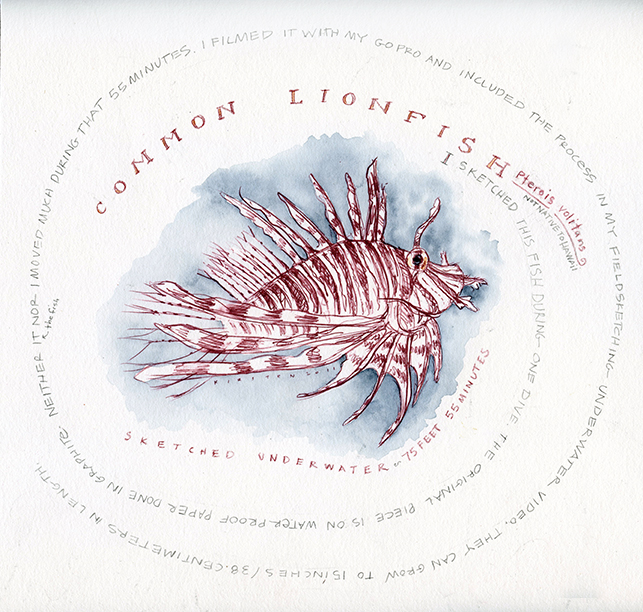 lionfish lowrez.jpg
