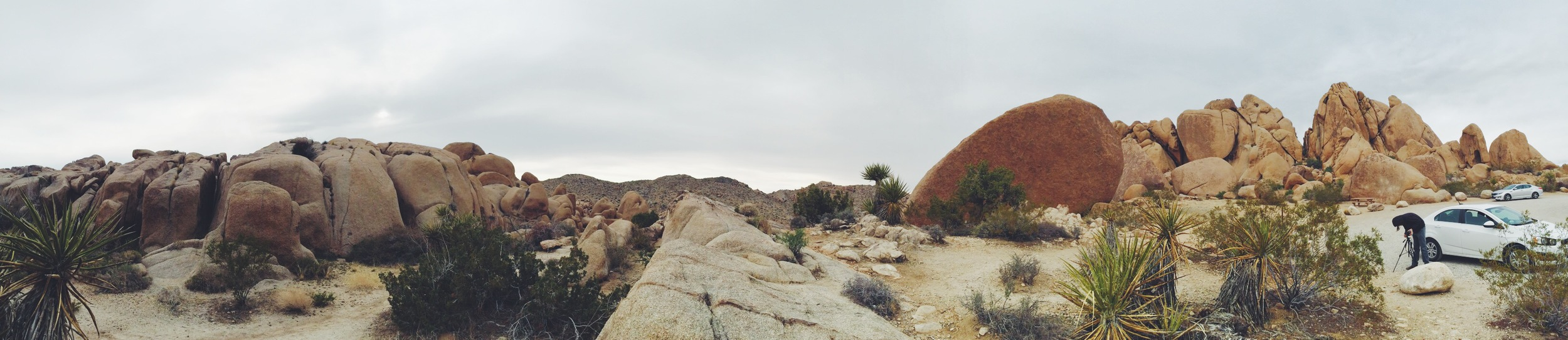 Near the Split Rock
