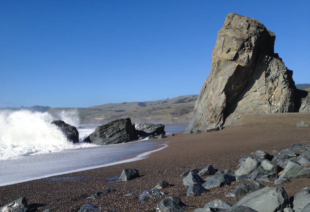 Goat_Rock_Beach,_Sonoma_County,_California_(02-11-2012).jpg