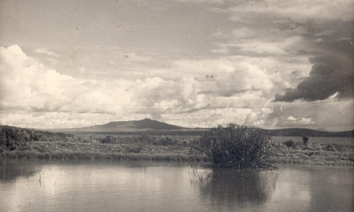 Lake Naivasha looking like a pond!.jpg