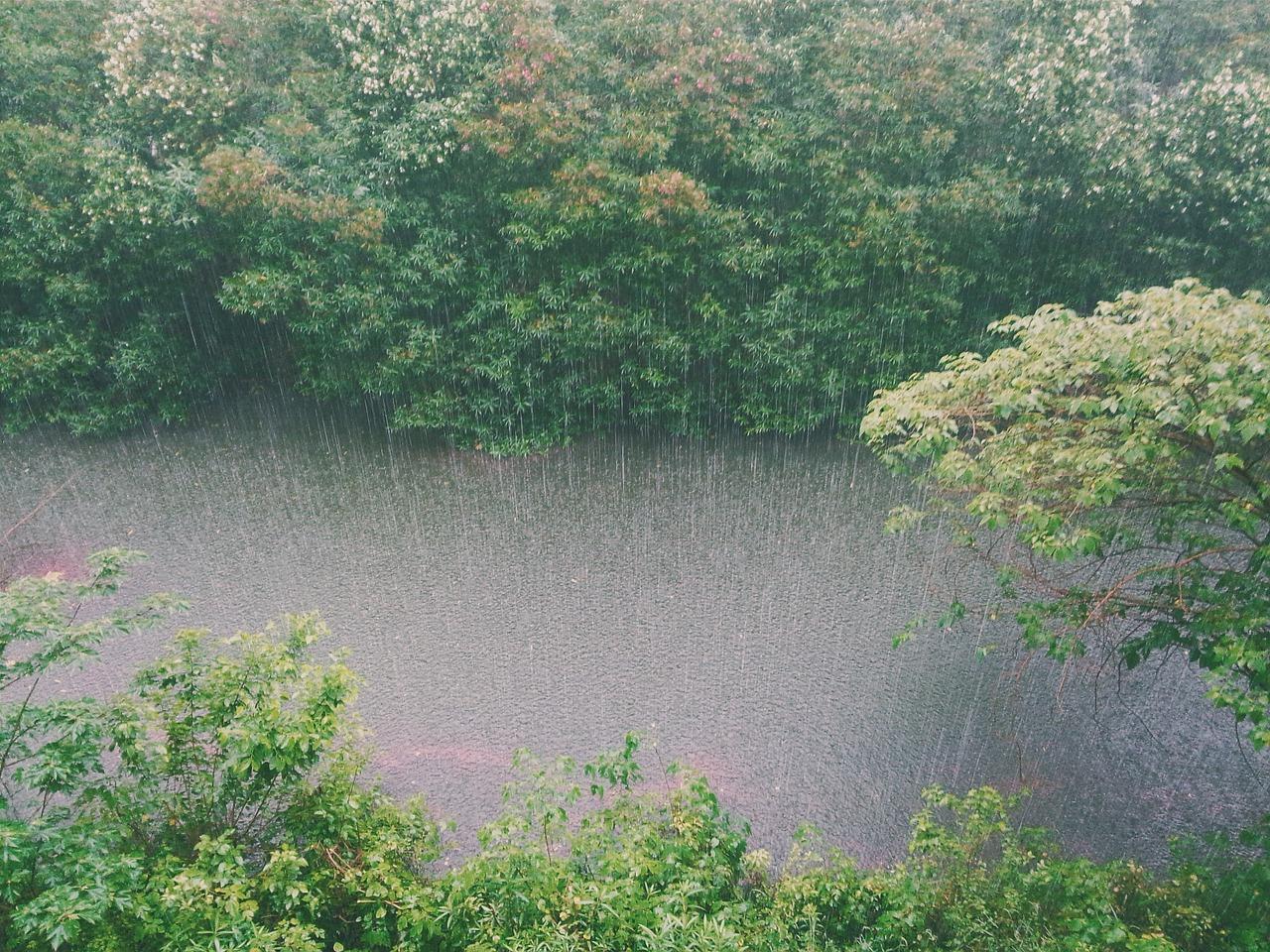 6027169-Rainy_season_strikes-0.jpg