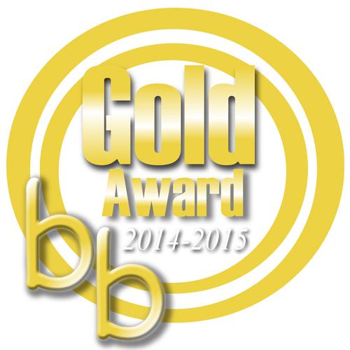 Bizzie Baby gold award 2014-15