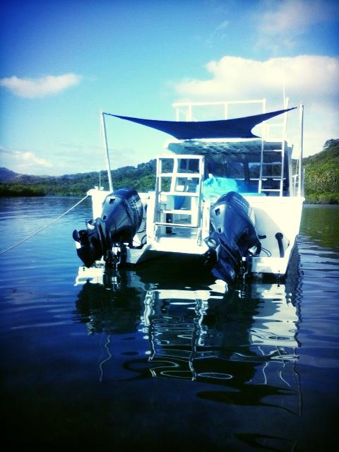 Remote 2.0 Snorkel Ladder