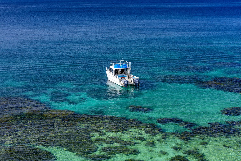 Rainbow Reef - Snorkel - Dive - The Remote Resort, Fiji Islands