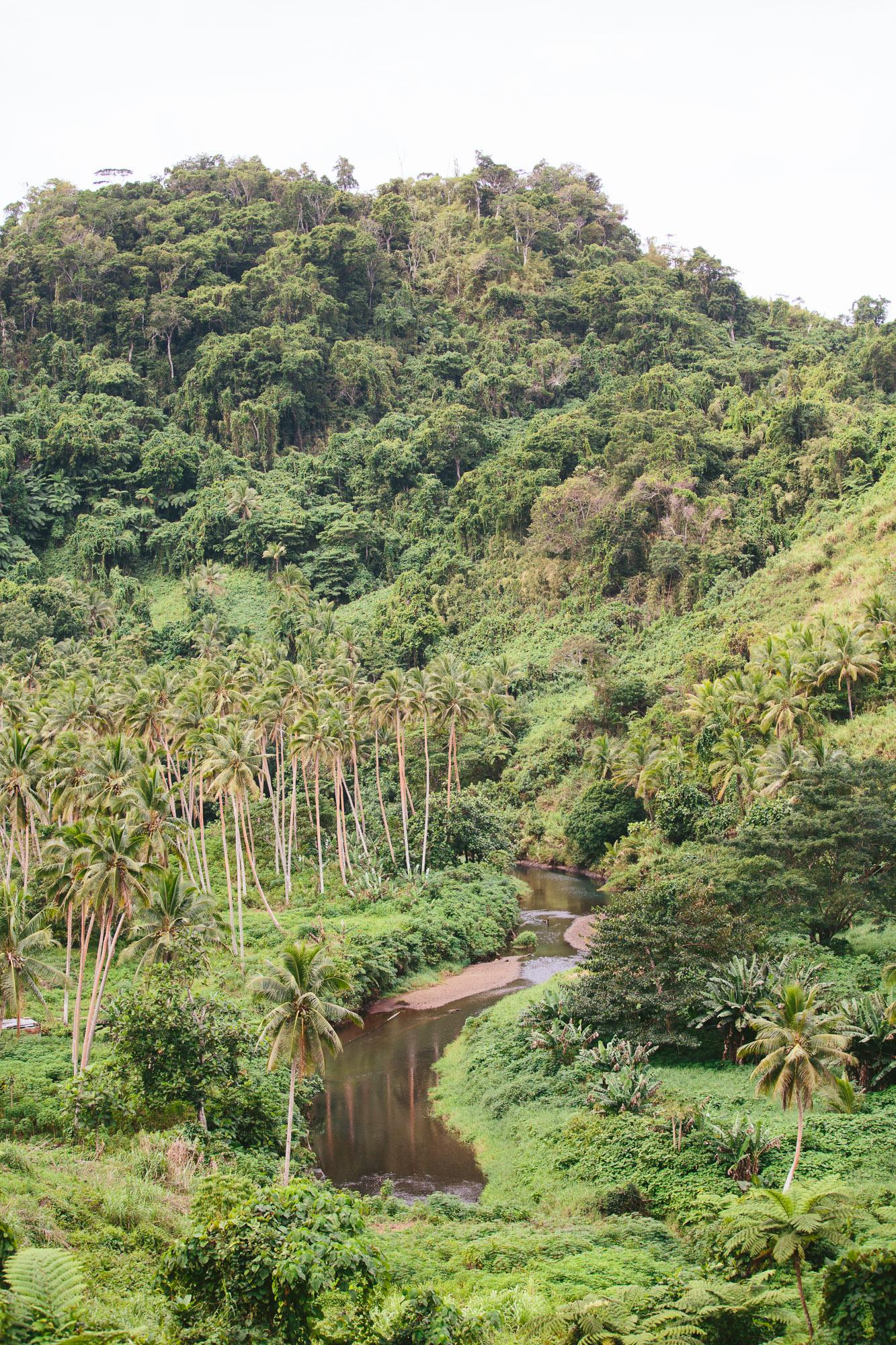 Buca Creek - Vanua Levu