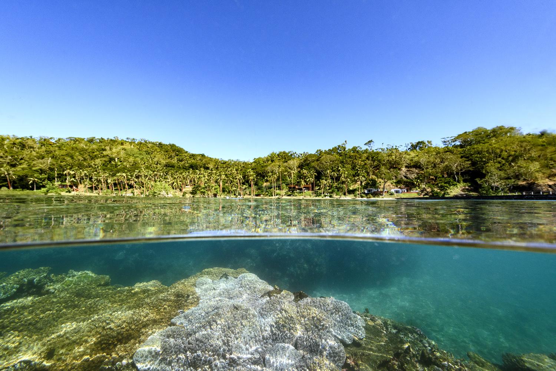 Fiji Resort - House Reef Snorkel off Jetty
