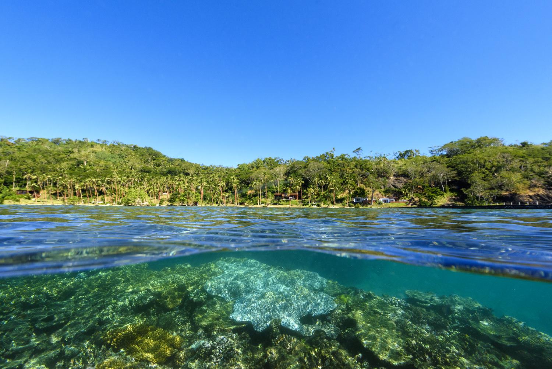 Fiji Resort - House Reef Snorkel off Jetty - The Remote Resort, Fiji Islands