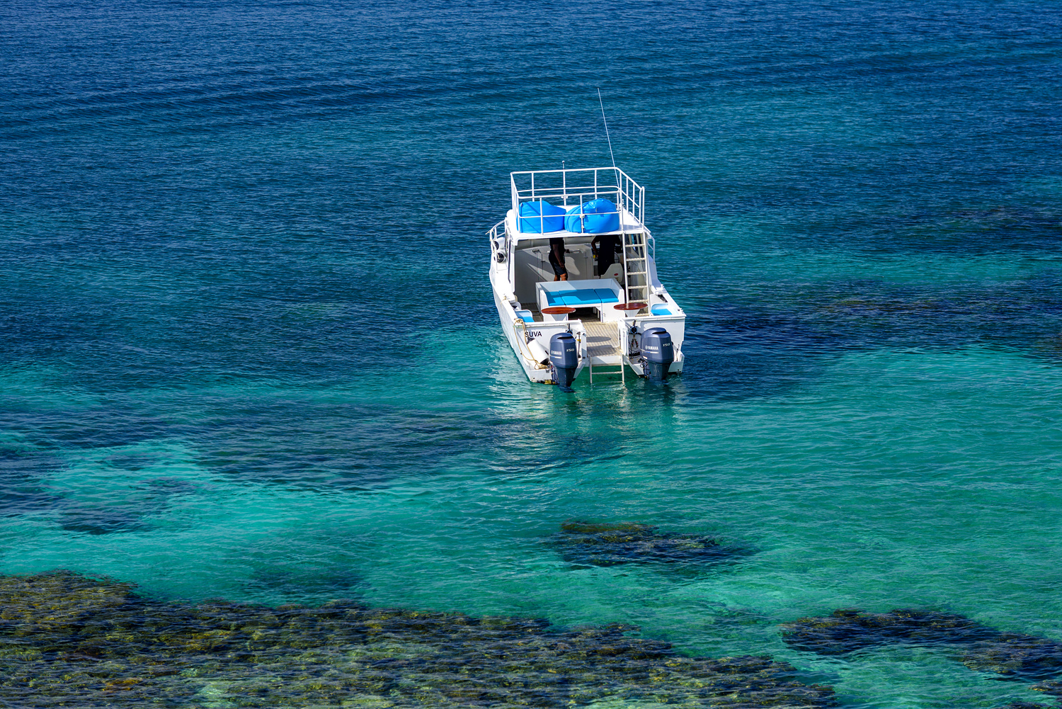 Fiji Resort - Remote 2.0 Boat on the Rainbow Reef, Vanua Levu for Fiji's best diving and snorkelling