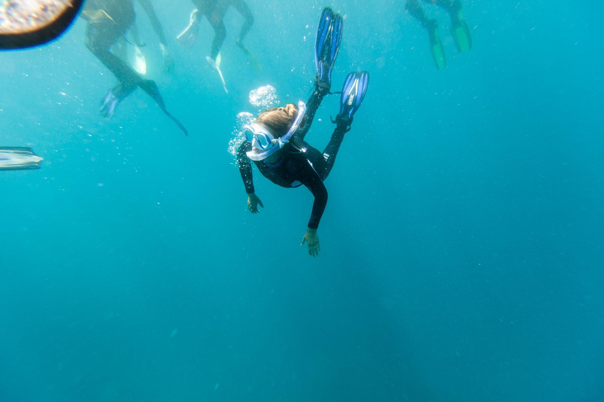Manta Ray Snorkel - The Remote Resort, Fiji Islands - Fiji Resort