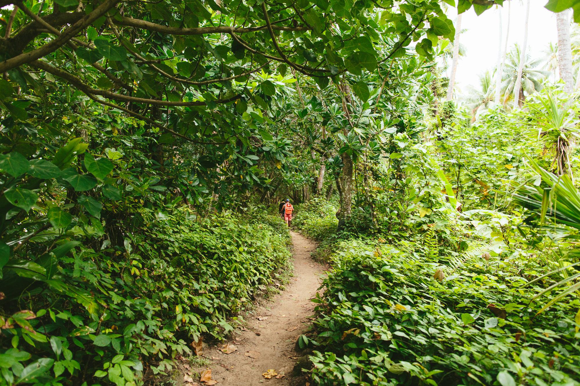 Lavena Coastal Walk Track - Taveuni Insider Day Trip - The Remote Resort Fiji Islands