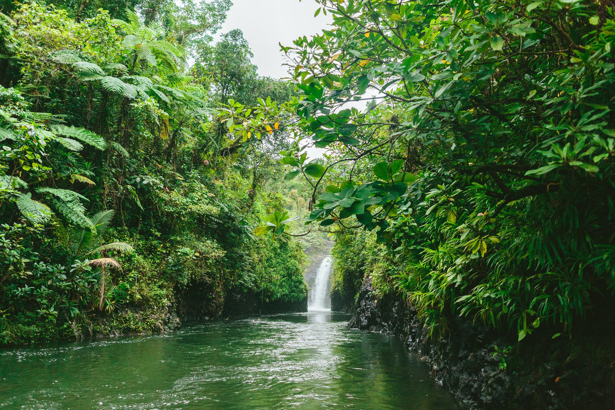 Lavena Coastal Walk Waterfall - Taveuni Insider Day Trip - The Remote Resort Fiji Islands