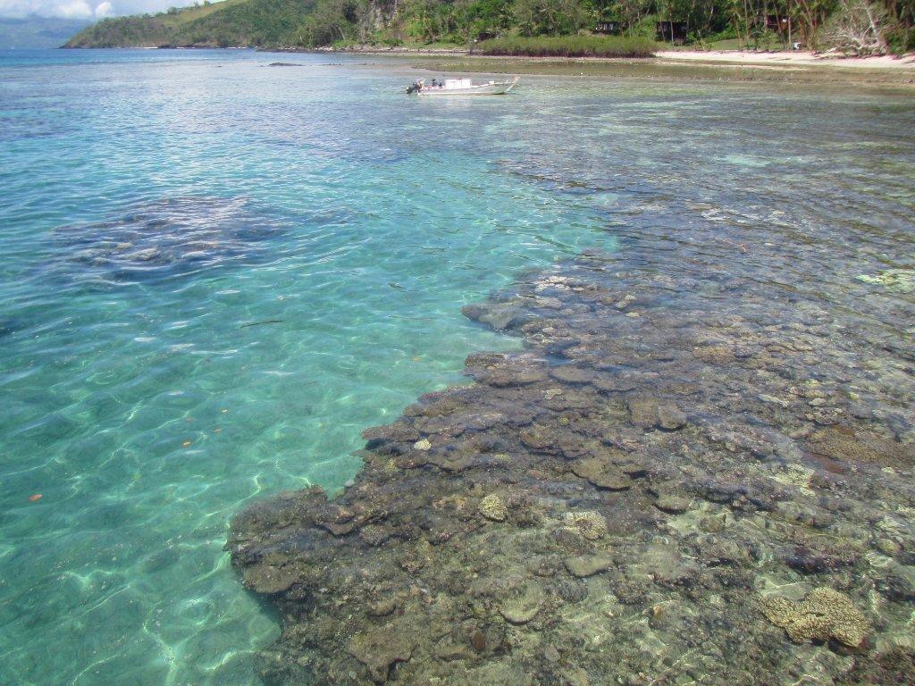 amazing-coral-off-resort.jpg