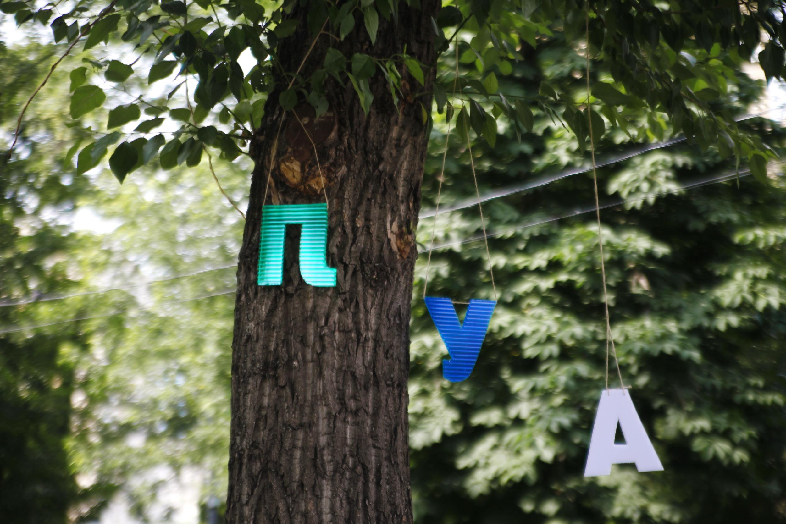 Украсили деревья буквами