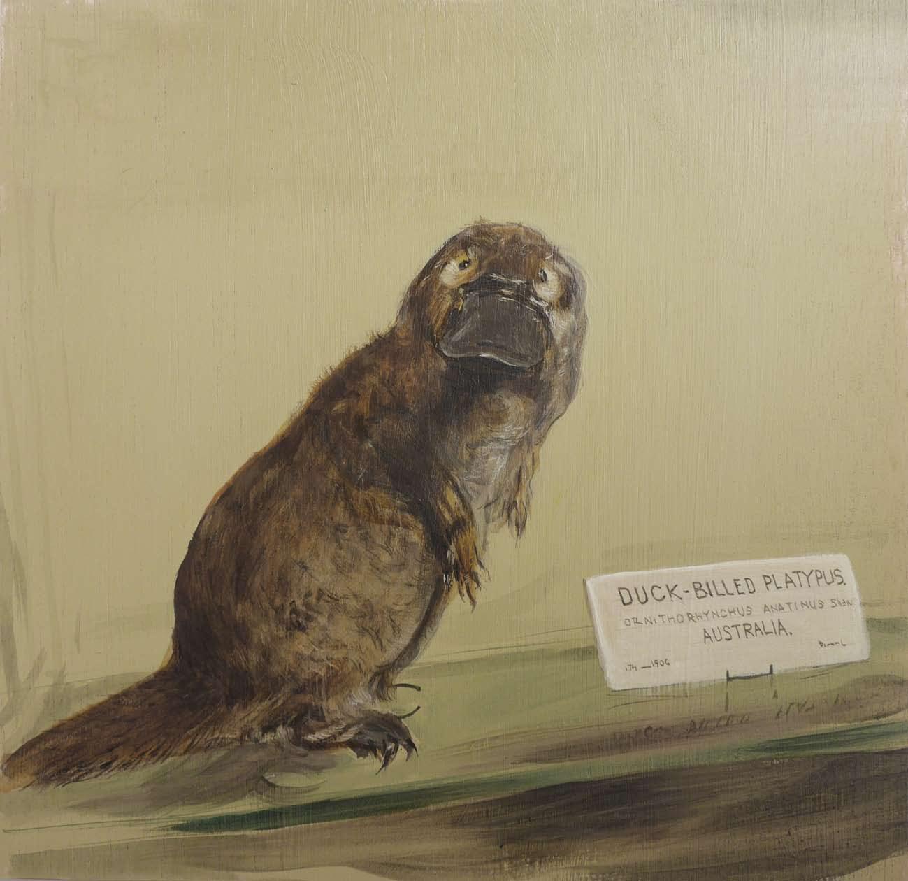 Recuerdos de Historia Natural_Page_12.jpg