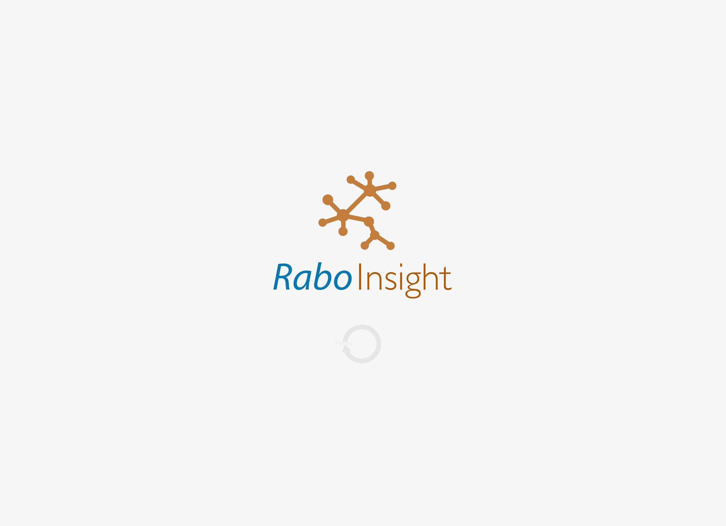 RaboInsight loading screen.