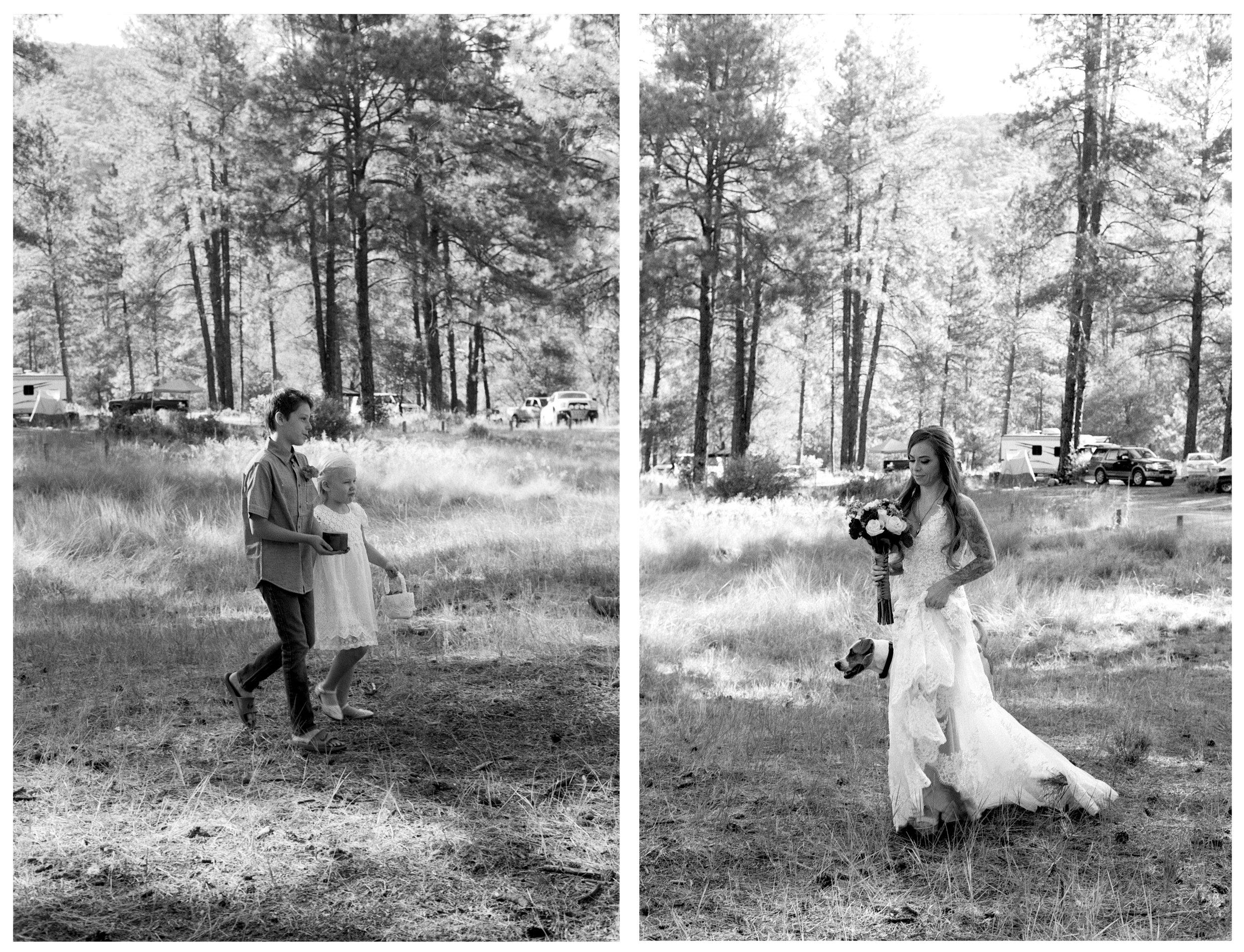Moss Wedding 3